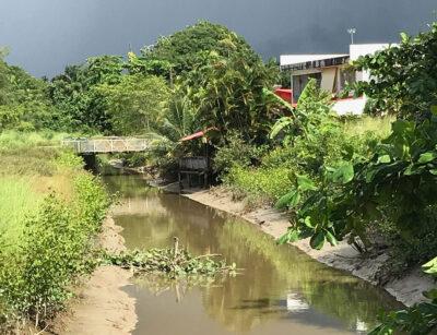 Un canal en périphérie du centre ville de Cayenne